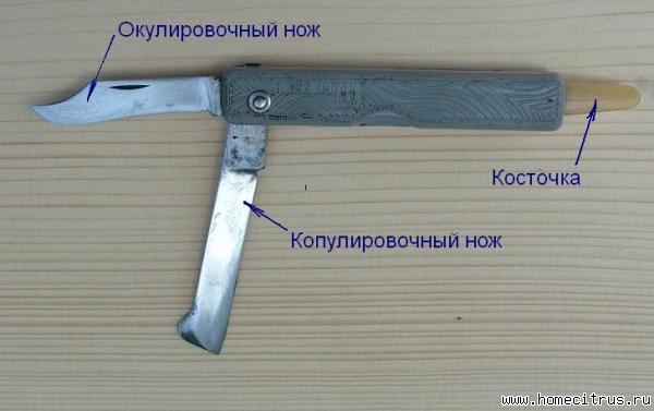 Копулировочный нож своими руками